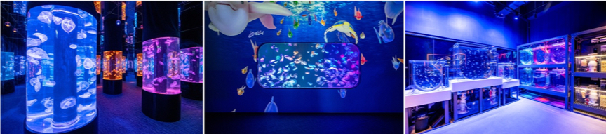 Cube O Discovery Park Hong Kongs First City-centre Ocean Experience Opens at Plaza 88 in Tsuen Wan
