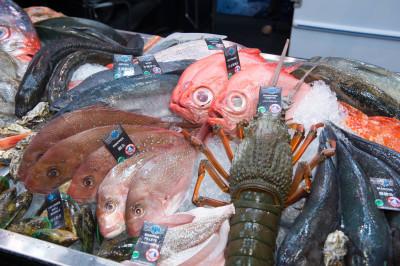 亞洲海鮮展公佈新展會日期和地點