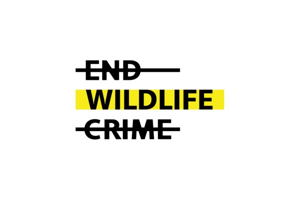 Sáng kiến #endwildlifecrime có mục tiêu loại trừ vĩnh viễn tội phạm đối với động vật hoang dã