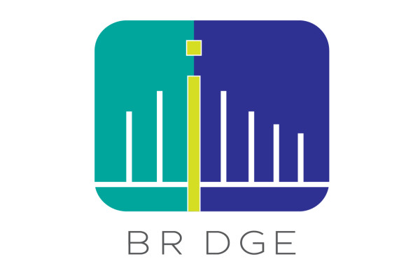 Nền tảng đầu tư ngang hàng (p2p) SeedIn đổi tên thành BRDGE và có kế hoạch thâm nhập Indonesia